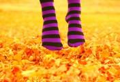 你应该知道的袜子小窍门大全——买袜子