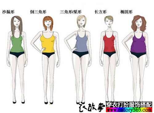 体型是买衣服的标杆,买衣服一定要按体型来